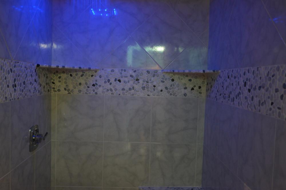 38.5 blue shower light