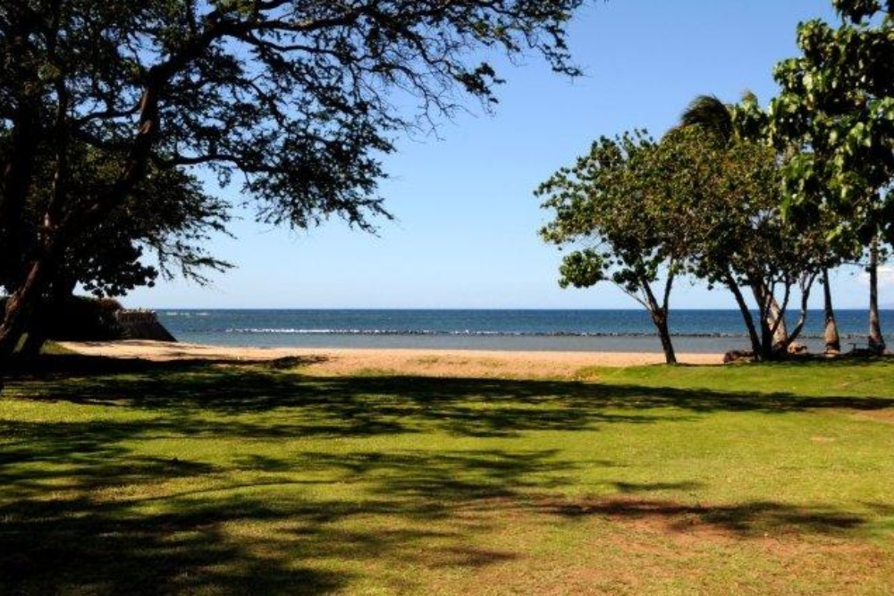 60 beach park
