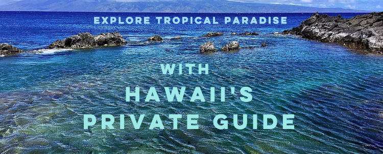 top maui recommendations
